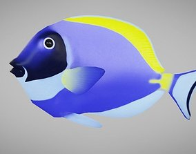 3D model rigged Blue Tang Fish