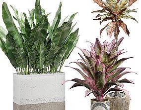 Potted plants Set 29 3D