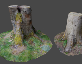 game-ready 3D Scanned Tree Stumps