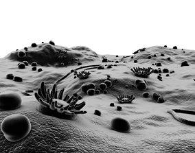 3D model Microscopic Environment