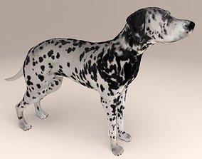 Dalmatian 3D print model