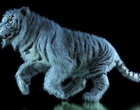 Raja The White Bengal Tiger 3D Model animated