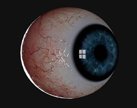 Realistic Human Eye biology 3D
