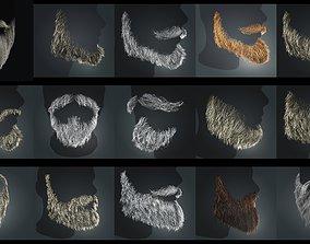 Beard RealTime Pack Version 1 3D
