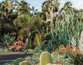3D Bundle 12 - Desert Garden
