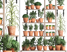 Plants collection Vertical gardening 27 3D