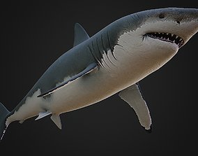 Shark Rigged 3D asset