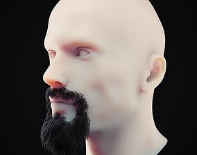 3D asset Beard Low Poly 2