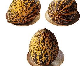 Turkish melon Kirkagach 3D model