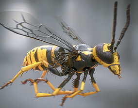 Wasp rigged PBR 3D model