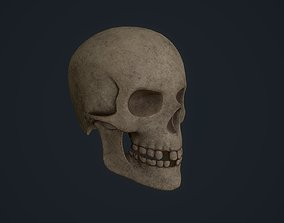 3D model game-ready Skull superficial