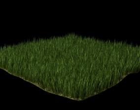 3D disjunct FREE GRASS