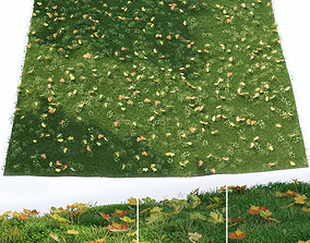Lawn with fallen leaves 3D