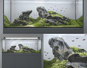 3D Aquascape aquarium