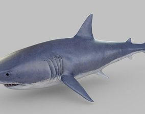 Shark 3D model game-ready PBR