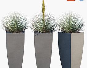 Plant in pots 41 3D