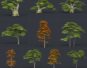 3D asset Low Poly 10 Tree Collection 02