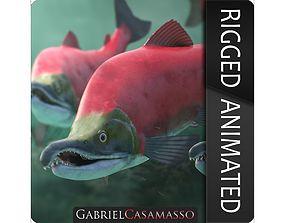 Oncorhynchus Nerka - The Red Sockeye Salmon 3D