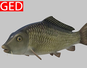 3D rigged river Fish