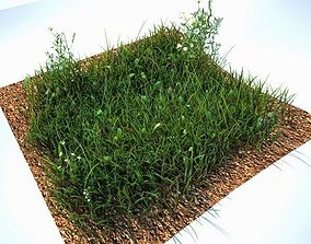 Grass Kit V2 for CInema 4D and Vray 3D model