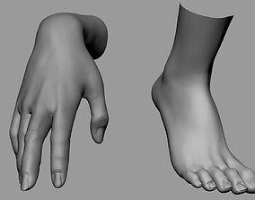 3D Female Hand Foot