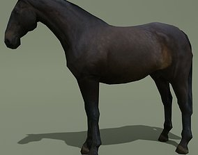 3D model LowPoly Horse E Dark Bay