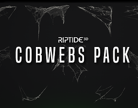 3D model Cobwebs Pack