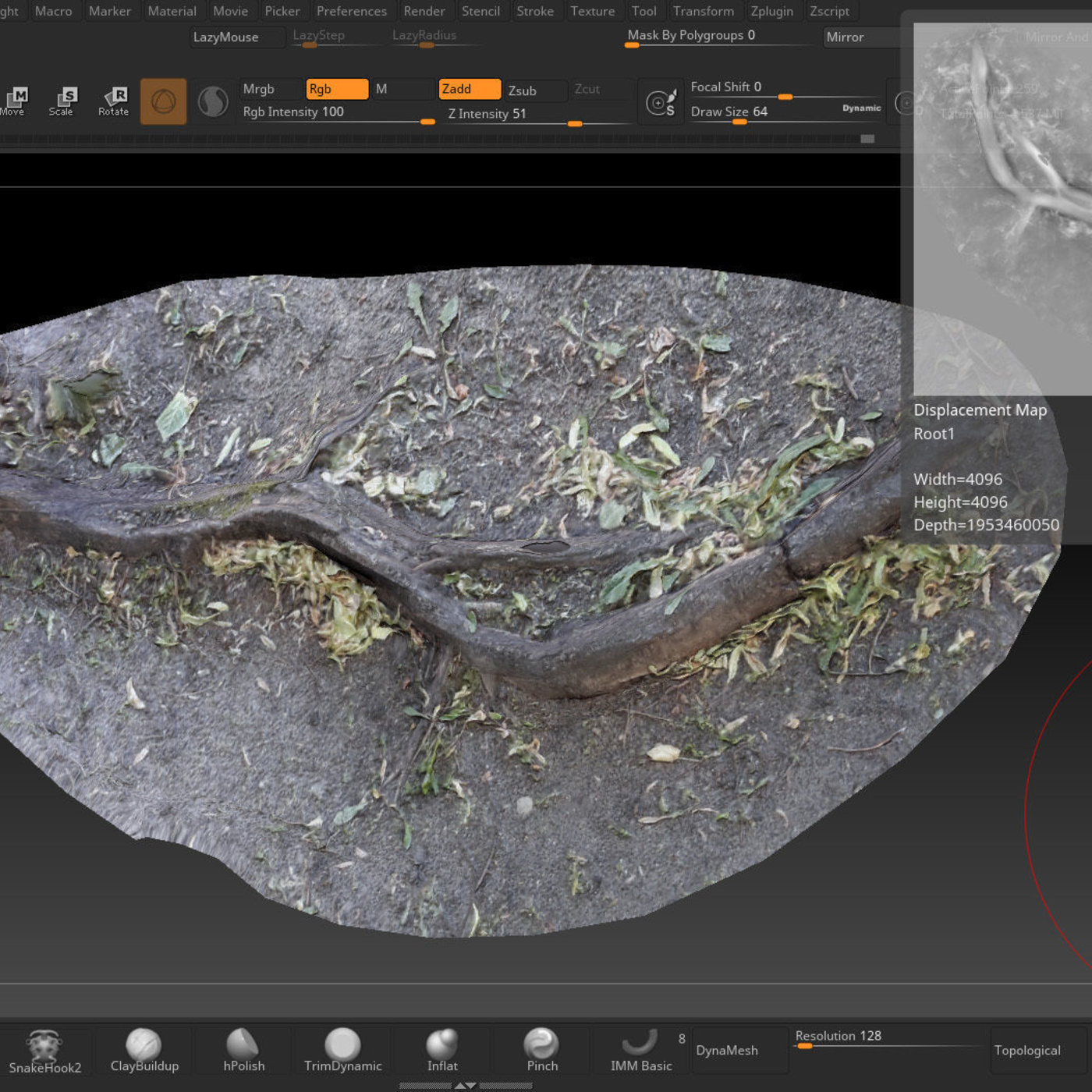 Low-Poly Photogrammetry Root Test