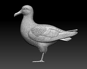 3D print model Seagull