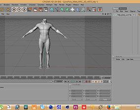 3D asset man body