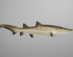 Sand Tiger Shark 3D model animated