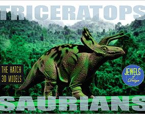 Triceratops model 3D