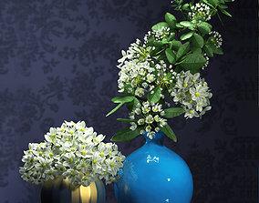 3D model flower vase set