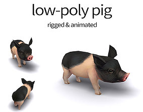 3D model pig pet pig swine hog hoggery