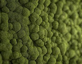 3D model ecodesign moss fx