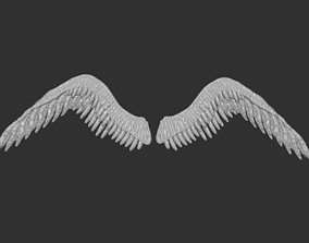 The Wings 2 3D print model