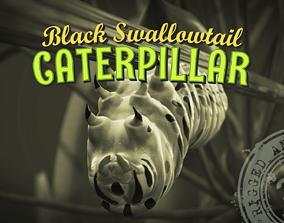 Siesta Swallowtail Caterpillar 3D model animated