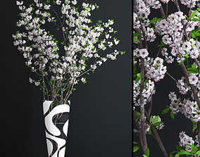 3D model 3d Cherry White Blossom