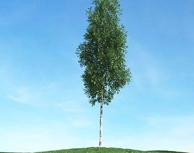 spring Green Leafy Tree 3D model