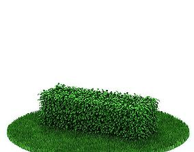 3D Green Small Hedge