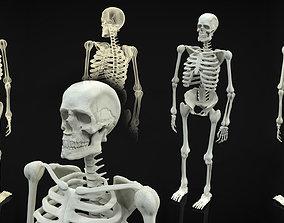3D Skeleton Full Body