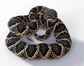 Rigged Eastern Diamondback Rattlesnake 3D asset
