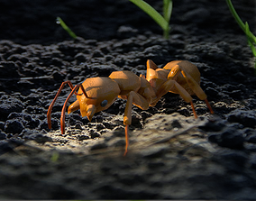 3D model Animated walking ant lowpoly