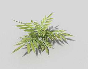 3D asset low-poly Plant