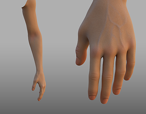 hand anatomy 3D model
