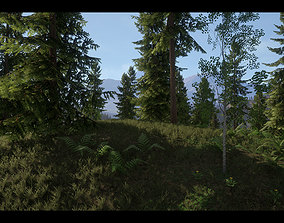 Realistic Forest Pack - UE4 3D
