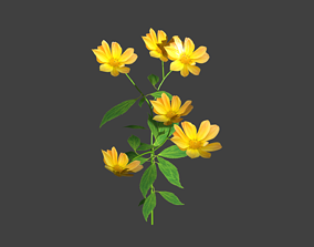 plant flower 3D model game-ready