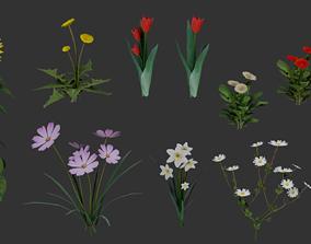 3D asset Flowers Pack