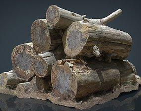 Wooden Logs 3D model