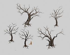 3D Dry trunk 65
